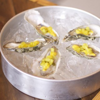 Oysters - Spero