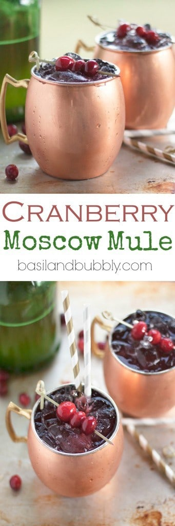 Cranberry Moscow Mule Recipe